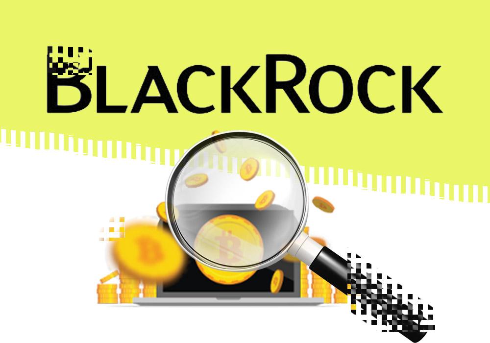 В BlackRock присматриваются к цифровым активам